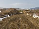Spruce and Fir Log Harvest  Maine  USA