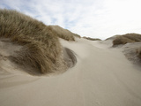 Deflation Hollow in a Coastal Sand Dunes  Oregon  USA