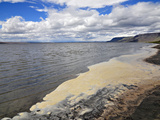Foam on the Shore of Lake Lake Abert  a Remnant of Pleistocene Lake Chewaucan