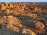 Petrified Sand Dunes  Utah  USA