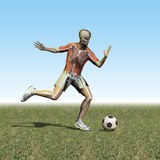 Soccer Player with Visible Skeleton