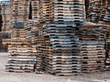 Stacks of Pallets at Pallet Recycling Business  Michigan  USA