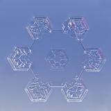 Snowflake  LM