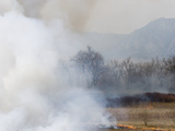 Smoke from Grassland Fire Reduces Visibility and Contributes to Air Pollution Along the Colorado
