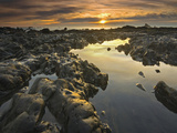 Tide Pools at Low Tide and at Sunset on Rialto Beach  Olympic National Park  Washington  USA