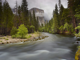 Merced River with El Capitan Looming in the Distance in the Spring  Yosemite National Park  Sa