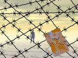 Fences  No Trespassing