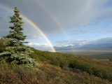 Double Rainbow  Denali National Park  Alaska Range Mountains  Alaska  USA