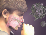 Artist's Concept of the Rhinovirus Which Causes the Common Cold