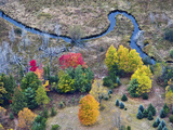 Meandering Stream in Through a Forest and Wetland Habitat in the Fall  Michigan  USA