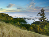 Fog Rolling over the Lower Hills at Mt Tamalpais On A Late Spring Evening  California  USA