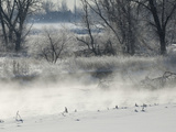 An Evaporation Fog Rises over the Platte River in Winter in Northern Colorado