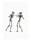 Human Skeletons Boxing