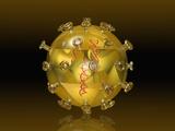 Glass Model of a Virus