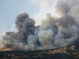 Heavy Smoke from a Wildfire Burning in the Rocky Mountains of Colorado  USA