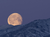 Moon over the Winter Alaska Range  Denali National Park  Alaska  USA
