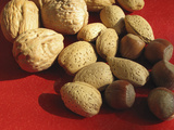 Walnuts  Hazelnuts  and Almonds Recent Studies Indicate That Eating Handful of Nuts Day