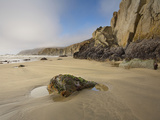 Rocks at Low Tide on a Sandy Beach on Point Reyes National Seashore  California  USA