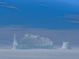 Large Icebergs Become Frozen into the Sea Ice During the Autumn and are Freed When the Ocean Melts