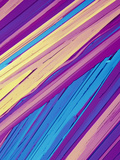 Benzoic Acid Crystals Viewed with Polarized Light  LM X40