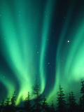Aurora Borealis or Northern Lights  Alaska  USA