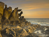 Salt Point State Park Has Many Unusual Tafoni Sandstone Rock Formations Like This One  California