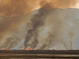 Controlled or Prescribed Burn  Bear River  Utah  USA