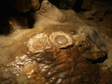 Fried Egg Formations are the Result of Man-Made Damage to the Stalagmites