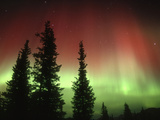 Aurora Borealis or Northern Lights  Alaska Range  Alaska  USA