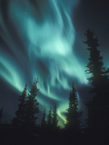 Aurora Borealis  Northern Lights  North America  Alaska  USA