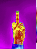 Thermogram of the Finger Gesture
