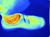 Thermogram of Man&#39;s Foot in a Shoe