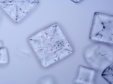 Salt Crystals  LM X25