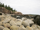 Water Worn Rocks  Low Tide  Acadia National Park  Maine