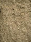 Sand on Sand Beach  Acadia National Park  Maine