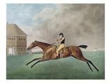 Baronet  1794 (Etching)