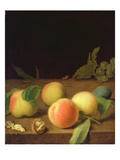 Fruit Still Life  1730 (Oil on Canvas)