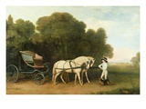 A Phaeton with a Pair of Cream Ponies in the Charge of a Stable-Lad  C1780-5 (Oil on Panel)