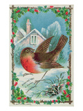 Christmas Card Depicting a Robin (Colour Litho)
