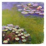 Waterlilies  1914-17