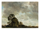 Landscape at Hampstead  Tree and Storm Clouds  C1821 (Oil on Paper Laid Down on Panel)