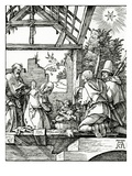 Nativity  from the Small Passion  1510 (Woodcut)