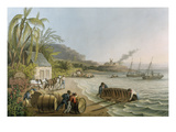 Carting and Putting Sugar Hogsheads on Board'  Plate X from 'Ten Views in the Island of Antigua'