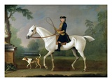 Sir Roger Burgoyne Riding 'Badger'  1740 (Oil on Canvas)