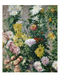 White and Yellow Chrysanthemums  1893 (Oil on Canvas)