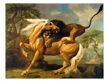 A Lion Attacking a Horse  C1762 (Oil on Canvas)