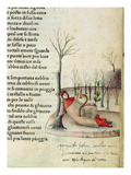 Fol 52R from 'Canzoniere E Trionfi' by Petrarch  C1470