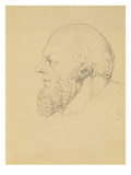 Socrates  C1820 (Graphite)