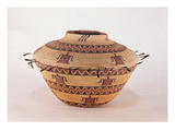 Pomo Feather Trimmed Storage Basket  from California (Woven Fibre)