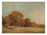 An Autumnal Landscape at East Bergholt  C1805-08 (Oil on Canvas)